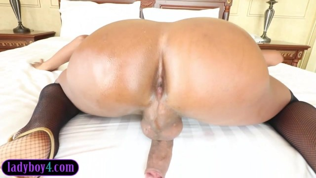 Well hung ladyboy blowjob and barebacked Video thumb #10